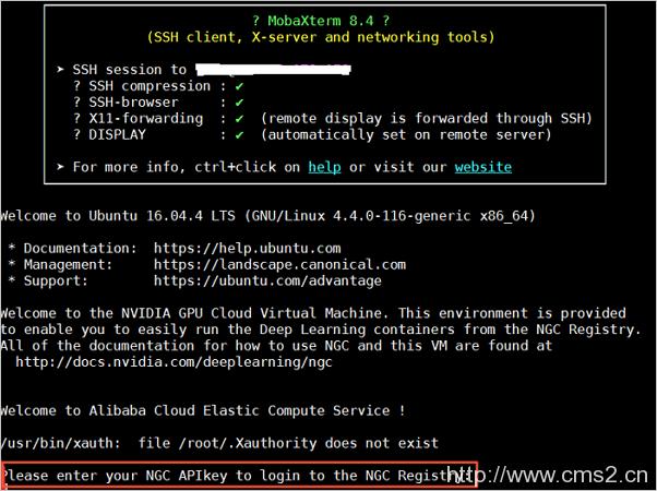 输入NGC API Key
