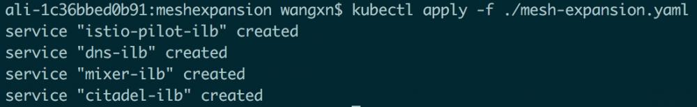 基于Istio实现Kubernetes与ECS上的应用服务混合编排插图4