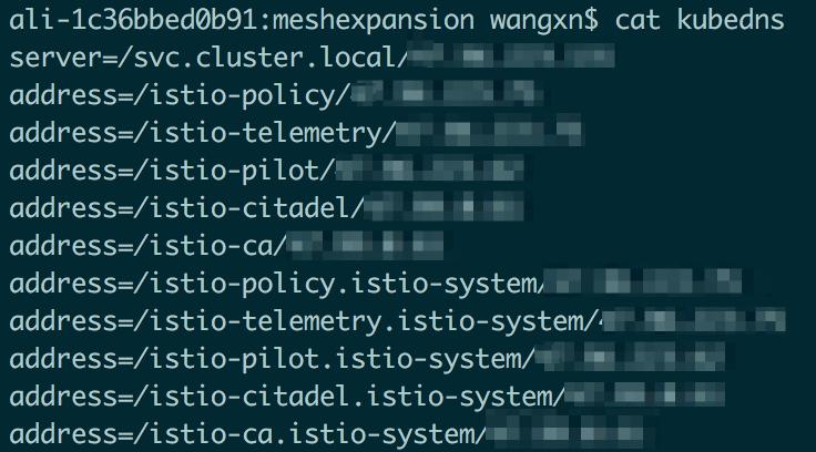 基于Istio实现Kubernetes与ECS上的应用服务混合编排插图8